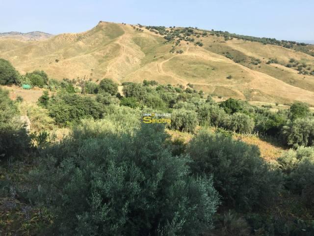 Terreno Edificabile Residenziale in Vendita a Motta Sant'Anastasia