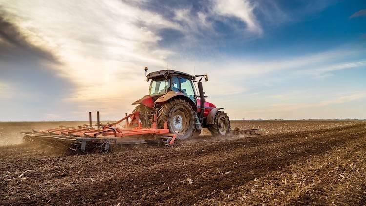 Terreno Agricolo in vendita a Dairago, 9999 locali, prezzo € 120.000 | PortaleAgenzieImmobiliari.it