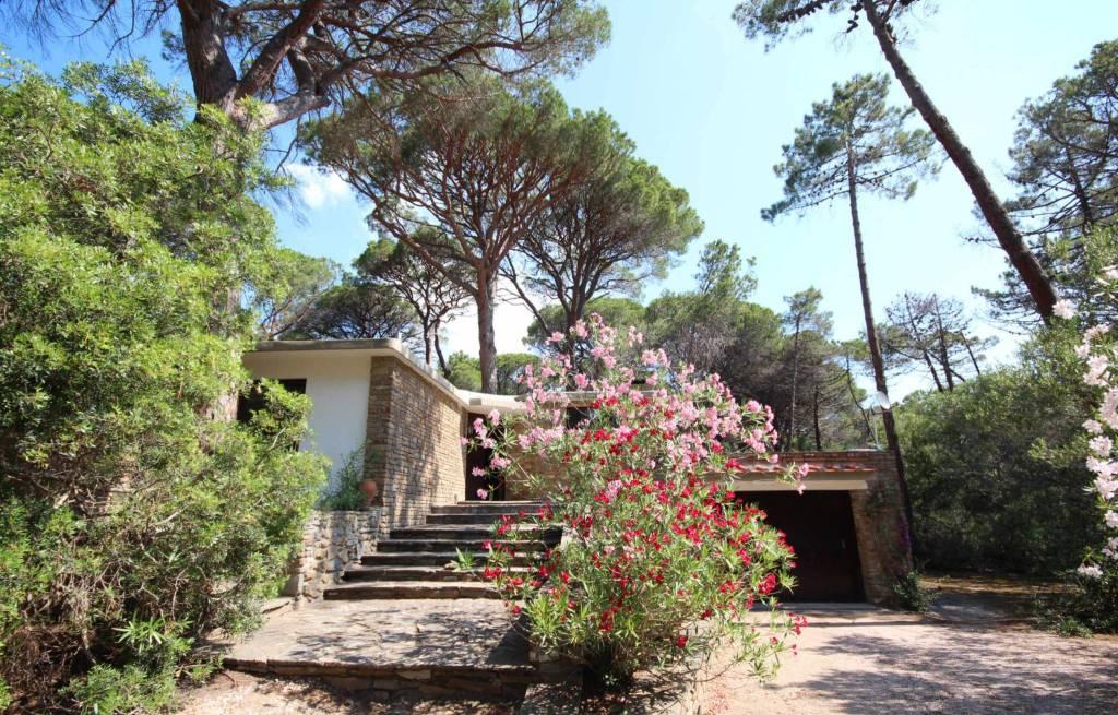Villa singola nella pineta di Roccamare